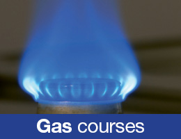 Gas and Electrcial Academy Website